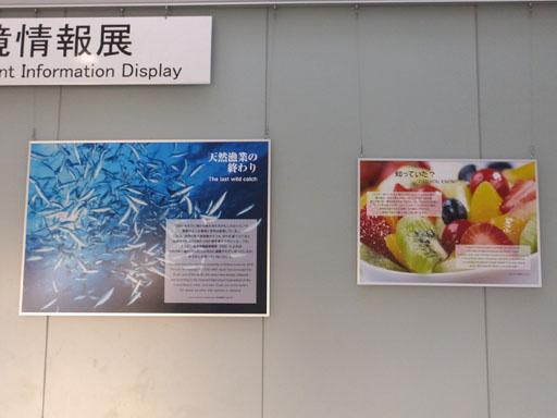 DSCF7190-20140528.jpg